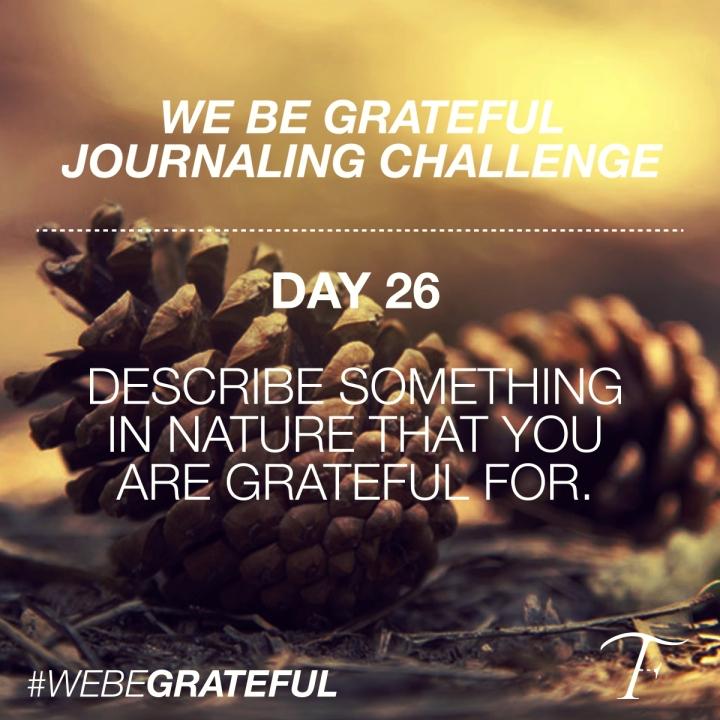 FTS-GratefulDay26.jpg