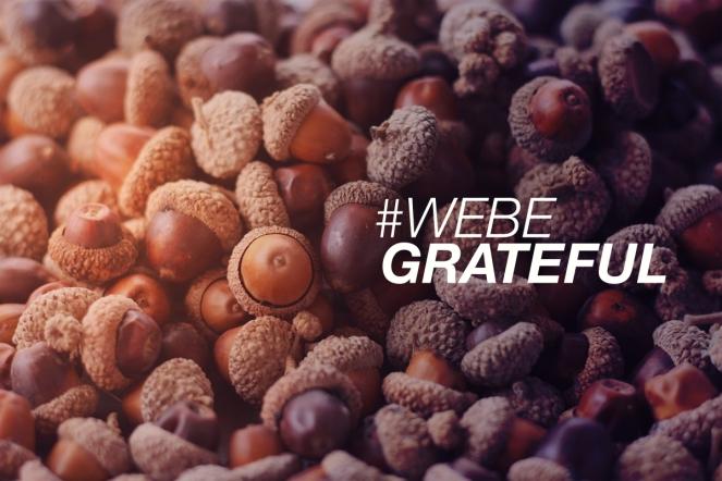 FTS-GratefulOther.jpg